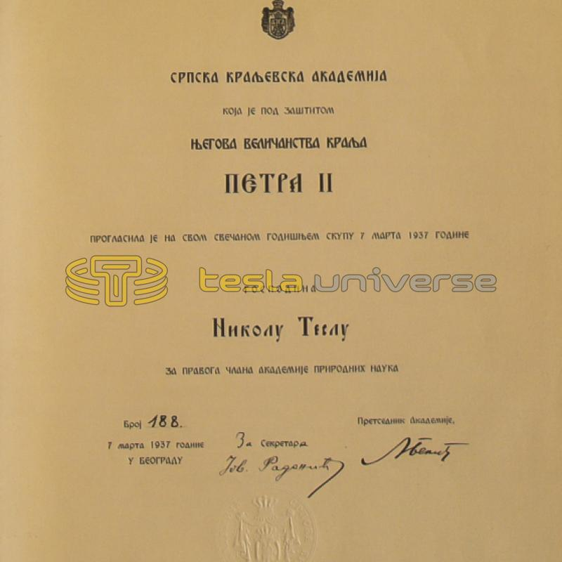 Certificate of permanent membership of the Serbian Royal Academy awarded to Tesla