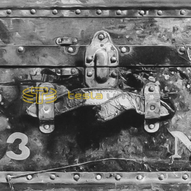 Close-up of Tesla's trunk number 23